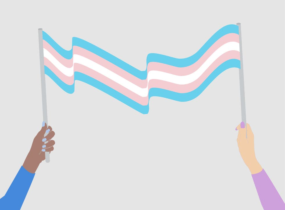 <p>'Unfortunately, all hope of reasonable debate has collided with the anti-trans wave now sweeping the UK' </p>