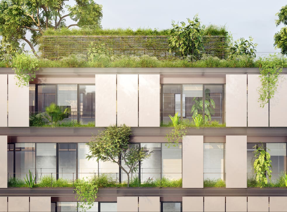 <p>Flat green roofs with a thick layer of soil cool buildings in summer by as much as 12C</p>