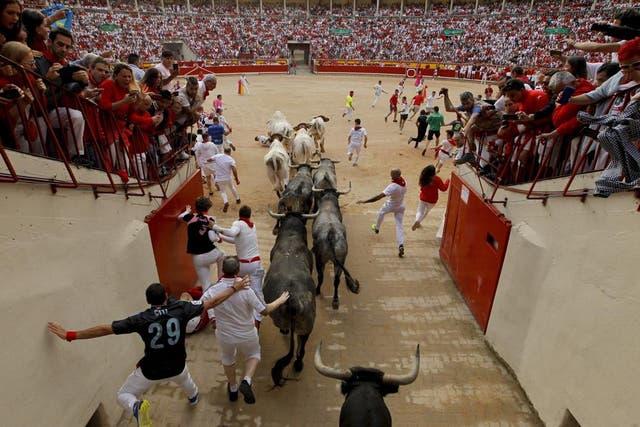 <p>Las corridas de toro quedaron fuera de las actividades en las que se puede gastar el dinero. </p>
