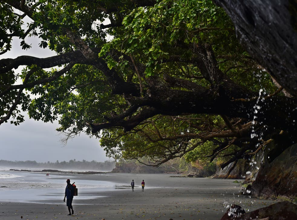 <p>File: In this picture taken on 7 September 2014, a man walks on the beach of Kerema, in Papua New Guinea. Two men from the Solomon Islands were rescued by a local fisherman in Papua New Guinea, about 400 kilometres away from when they started their journey on a small motorboat</p>