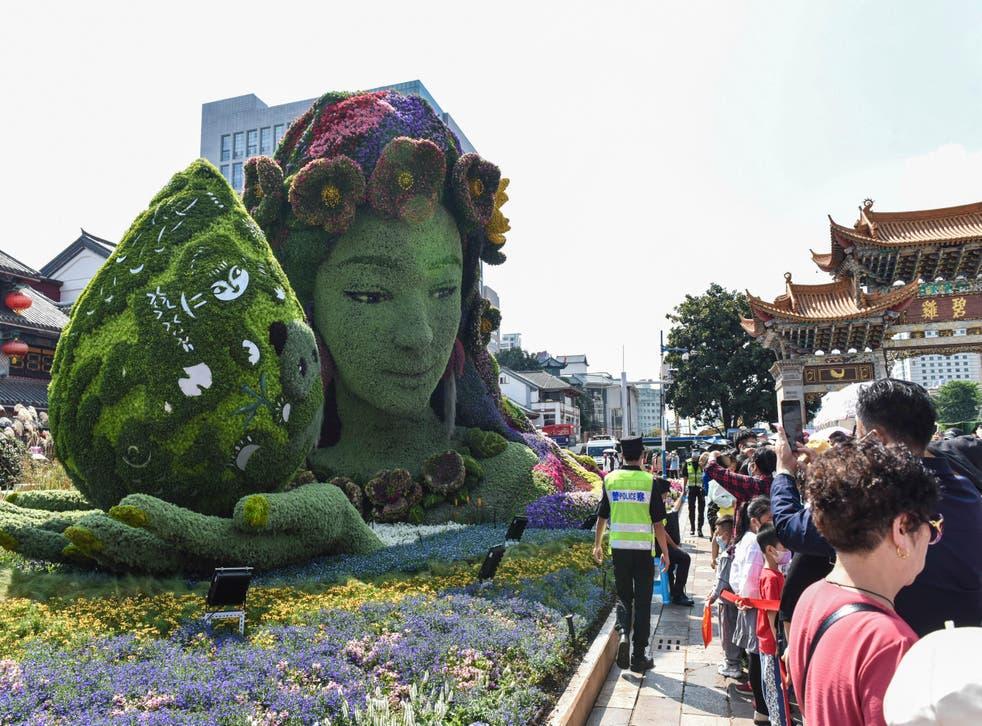China UN Biodiversity
