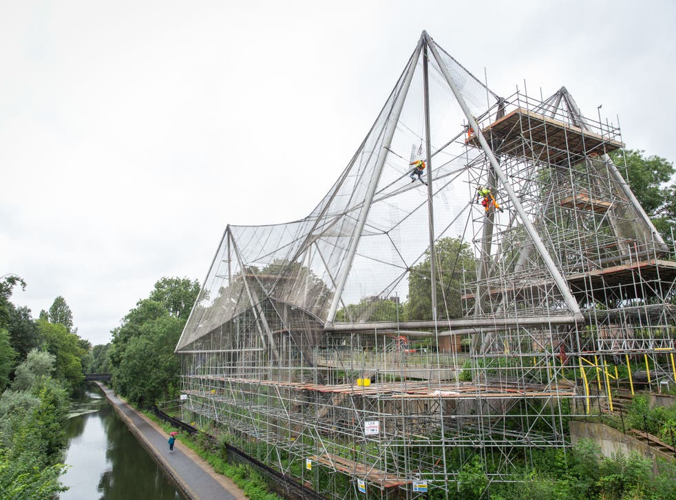 The demeshing of the Snowdon Aviary at London Zoo (Zoological Society of London)
