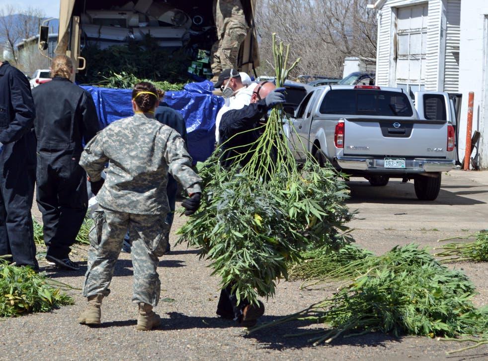 Oregon Marijuana Emergency