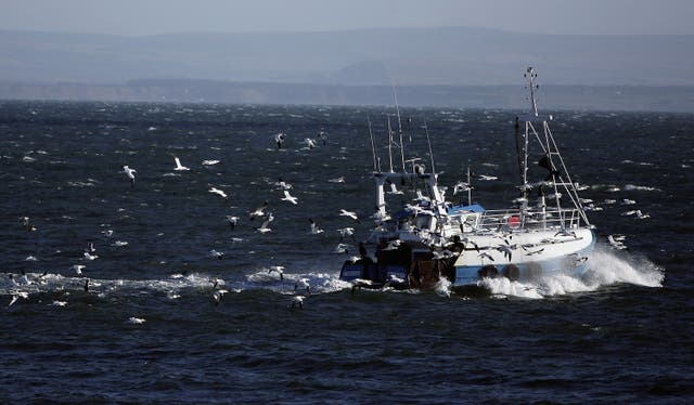 <p>Wild birds migrating to the UK from mainland Europe during the winter months can carry the disease </p>