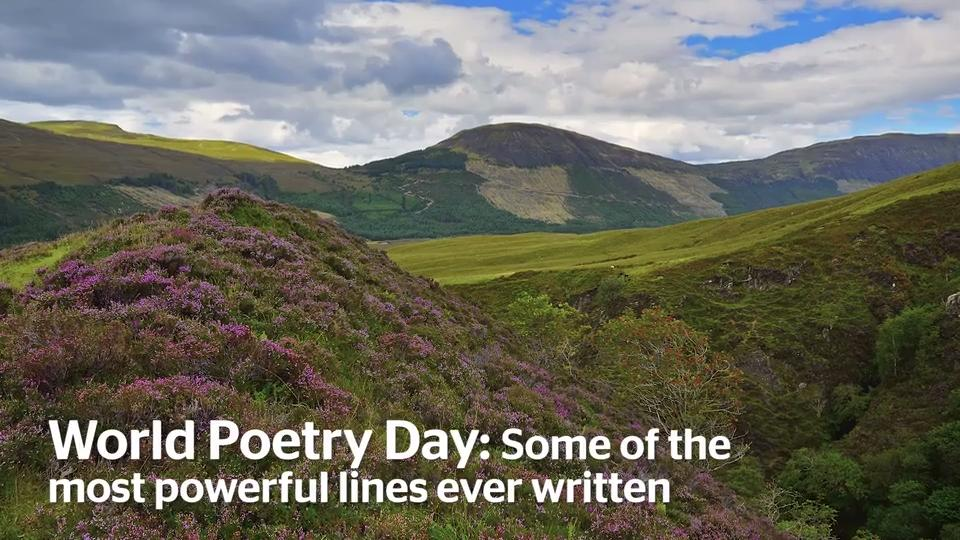 World Poetry Day 2019: 28 of the most powerful lines ever written