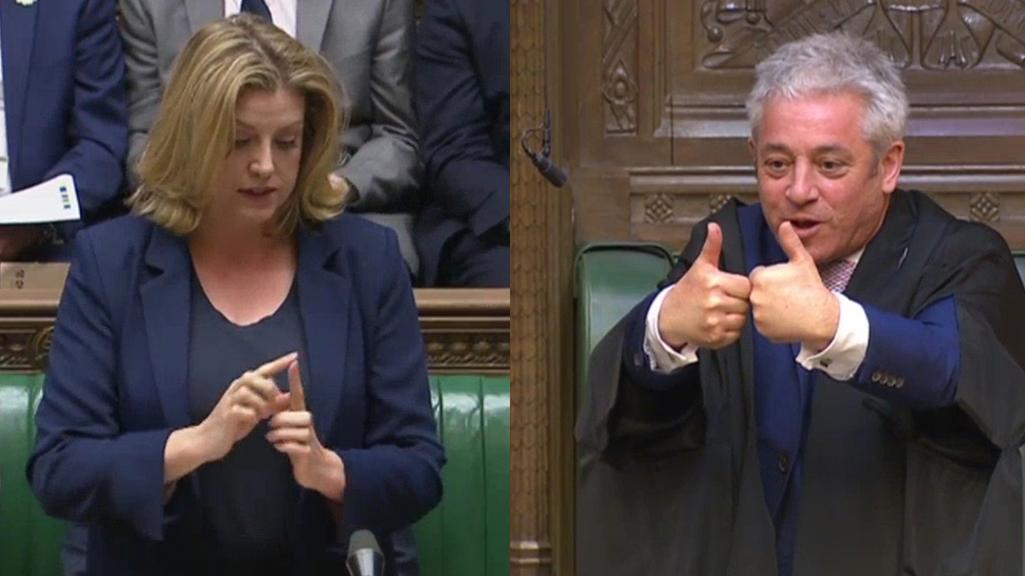 Penny Mordaunt becomes first minister to use sign language in the Commons