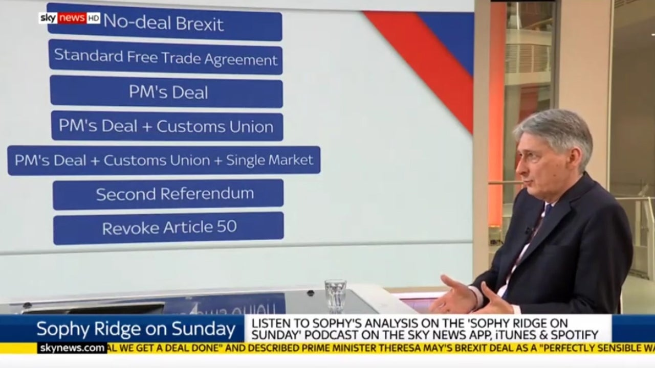 Brexit: Hammond says campaign for second referendum is 'perfectly coherent' and 'deserves to be considered'