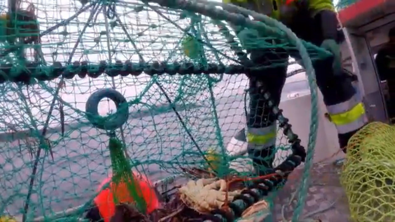 What it's like to fish for king crab in the Arctic Ocean