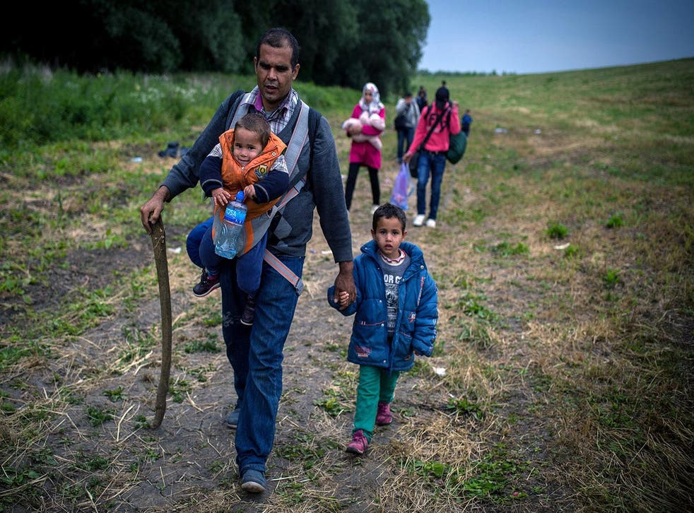 A group of migrants from Syria walk towards the border with Hungary, near Kanjiza on 25 June 2015.