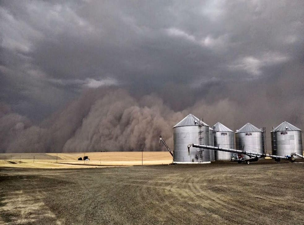Picture: U.S. Department of Agriculture/ Flickr/ a Haboob in Ritzville, Washington, circa 2014