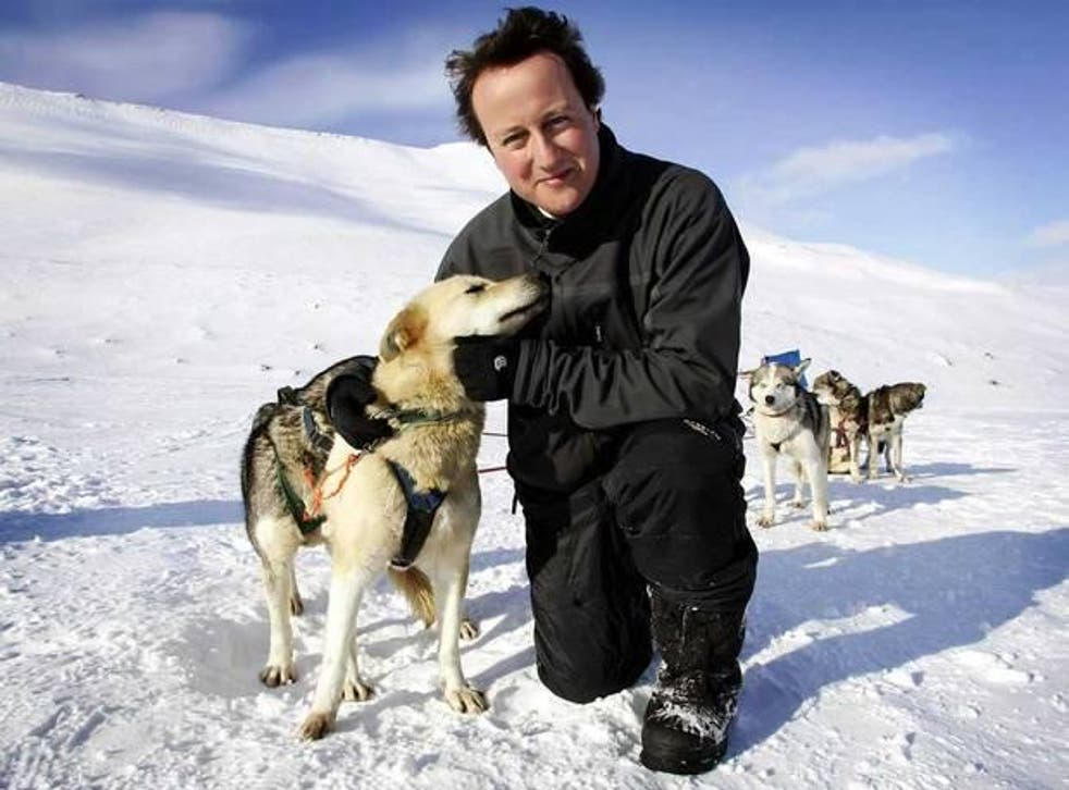 """David Cameron of """"greenest government ever"""" fame"""