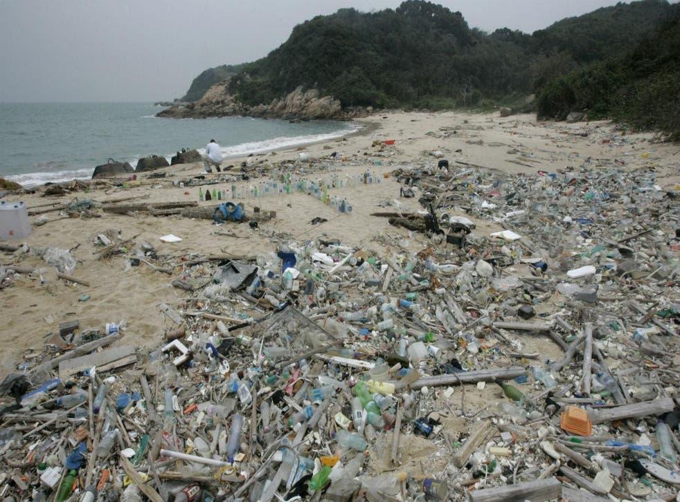 (Picture: EPA