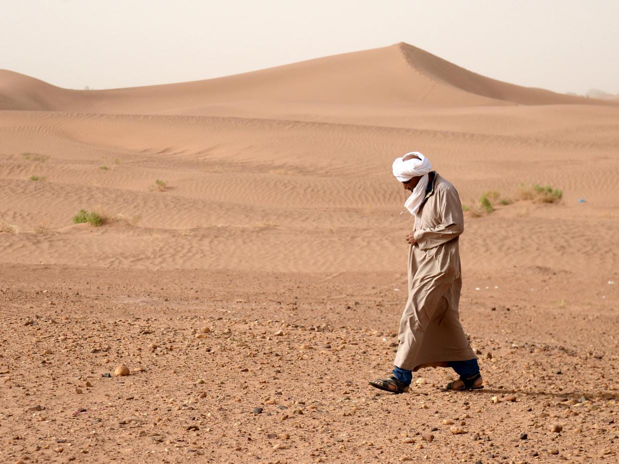World's largest desert has grown even larger due to climate change
