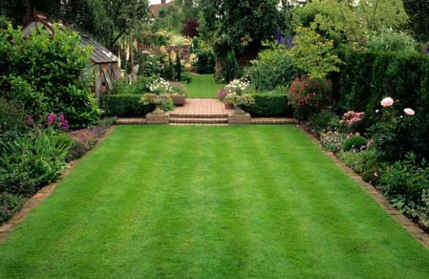 turf war how to grow the perfect lawn the independent. Black Bedroom Furniture Sets. Home Design Ideas