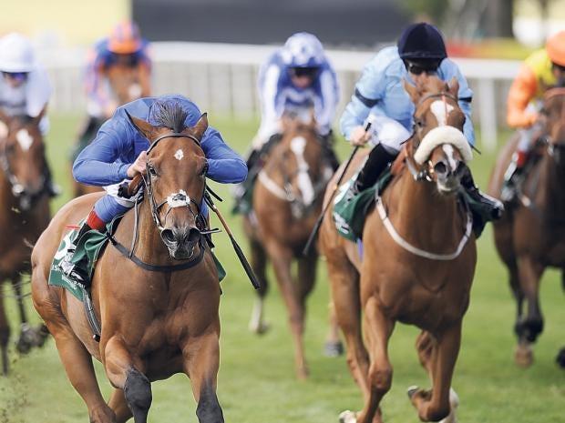 22-horses.jpg