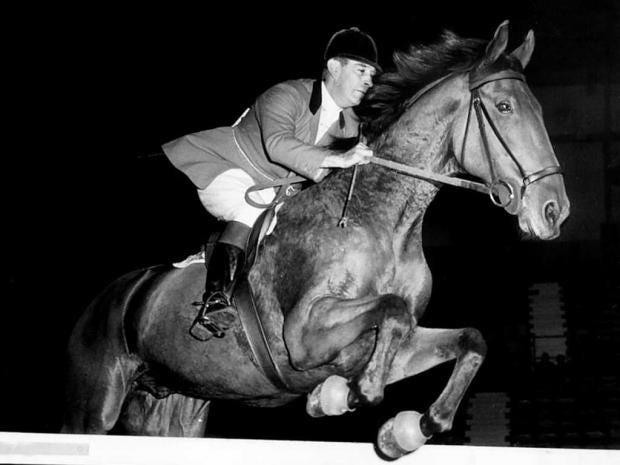 SP-20-horse2-pa.jpg