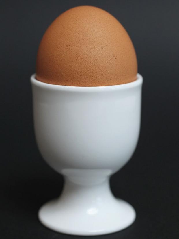 24-eggyolk-gt.jpg