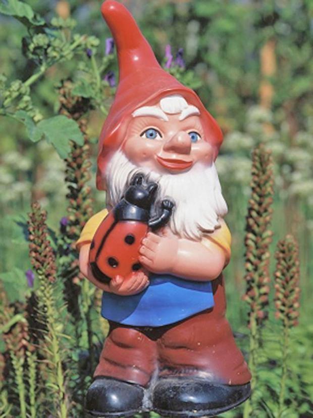 garden-gnome.jpg