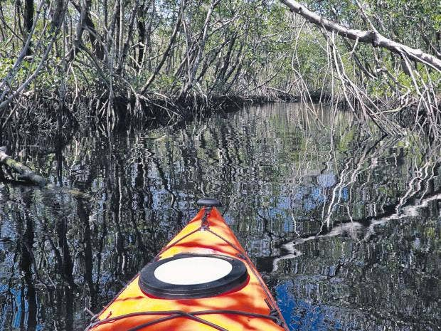 Florida-alamy_1.jpg