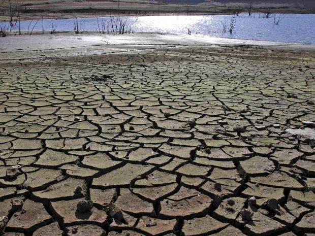 pg-1-global-warming-reuters.jpg
