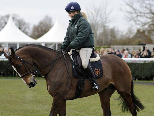 horse.getty.jpg