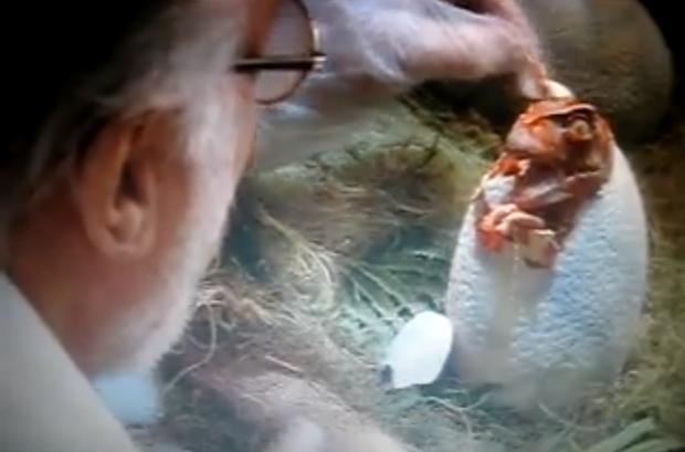 Jurassic-park-egg.png