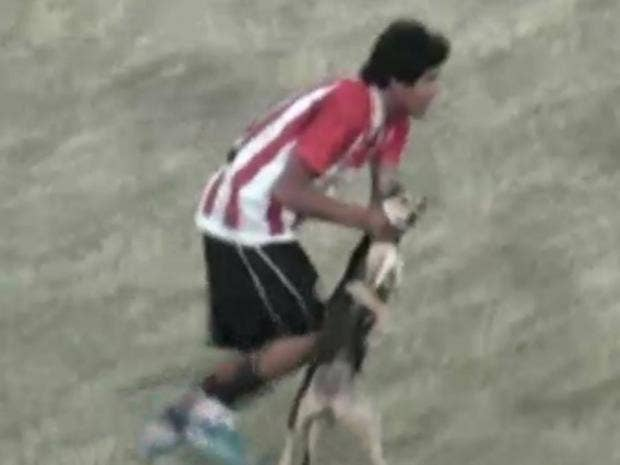 dog-footballer.jpg
