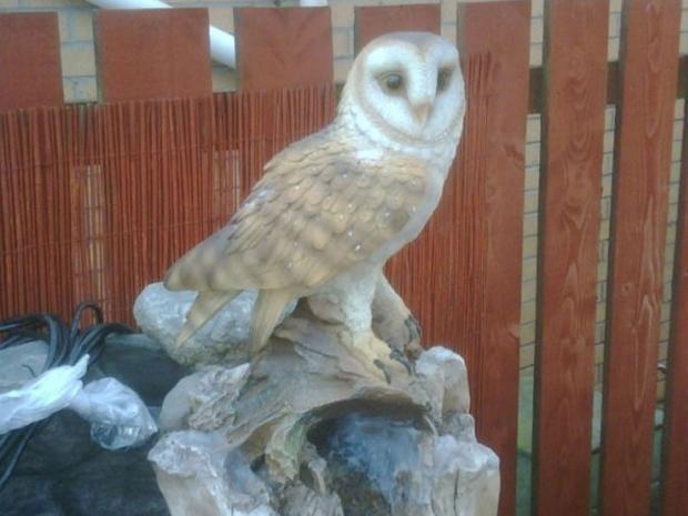Tied_owl.jpg