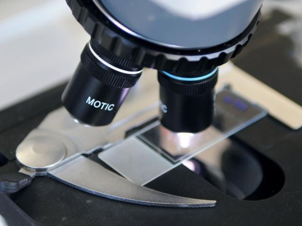 microscope-getty.jpg