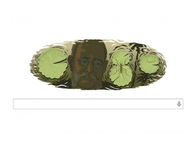 Google-Finlay.jpg
