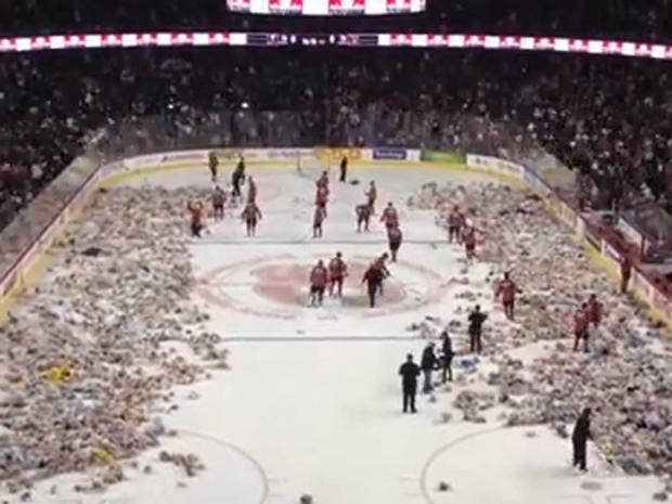hockey-bears.jpg