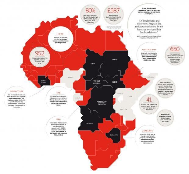 africaFORweb_1.jpg
