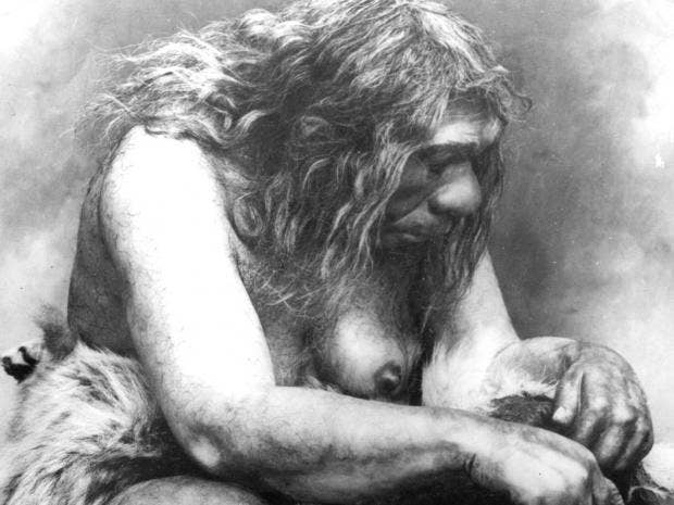 web-neanderthal-getty.jpg