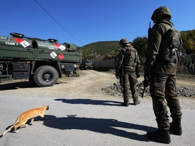 kosovo-cat-italian-army.jpg