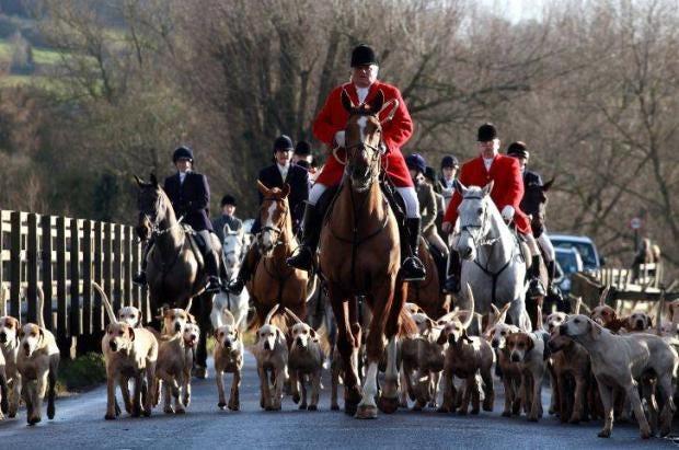 foxhunting-getty.jpg