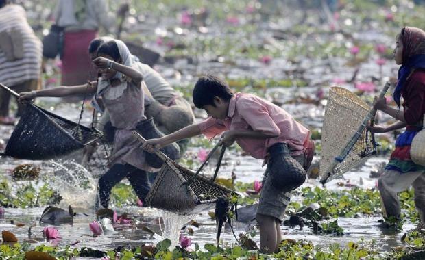 india-fishing-3.jpg