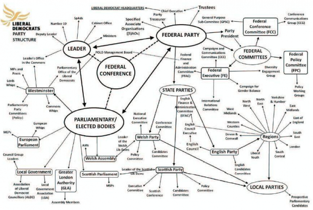 lib dem party structure.PNG