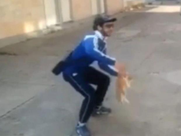 cat-thrower-.jpg