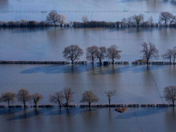 floods-environment.jpg