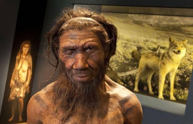 Dental Plaque DNA Shows Neandertals Used 'Aspirin'