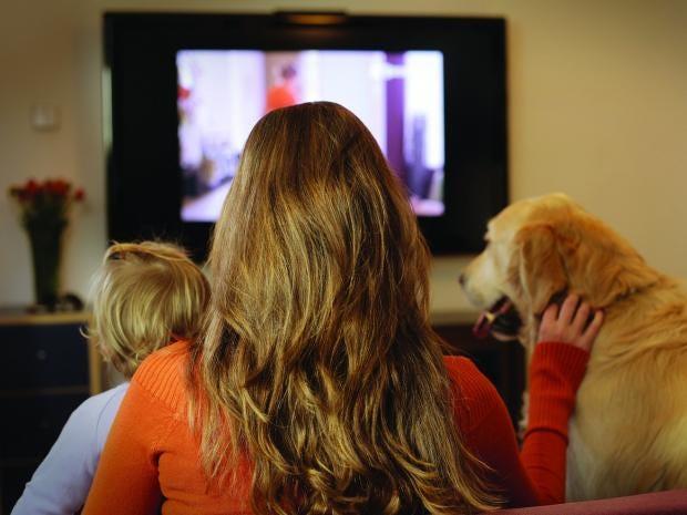 television-licence.jpg