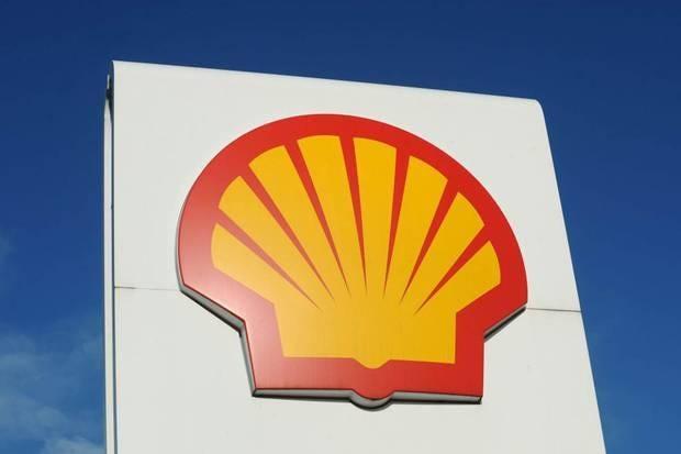 shell3.jpg