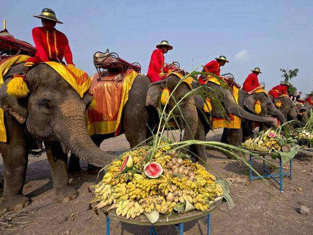 elephant-day-1.jpg