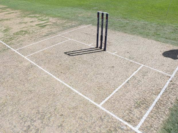 cricket-stumps.jpg
