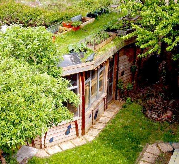 shed-1.jpg