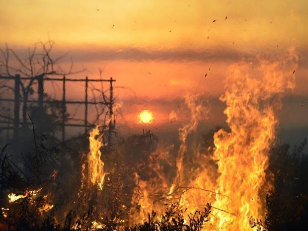 wildfires-4.jpg