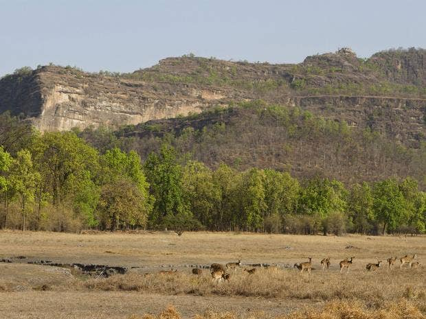 Madhya-Pradesh.jpg