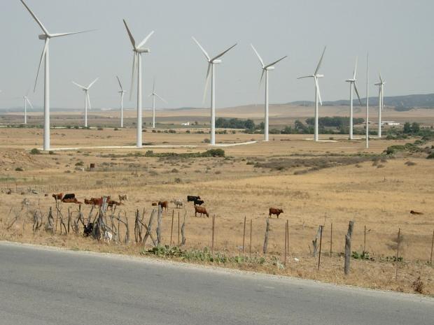 Rural-Andalucía,-Spain_1.jpg