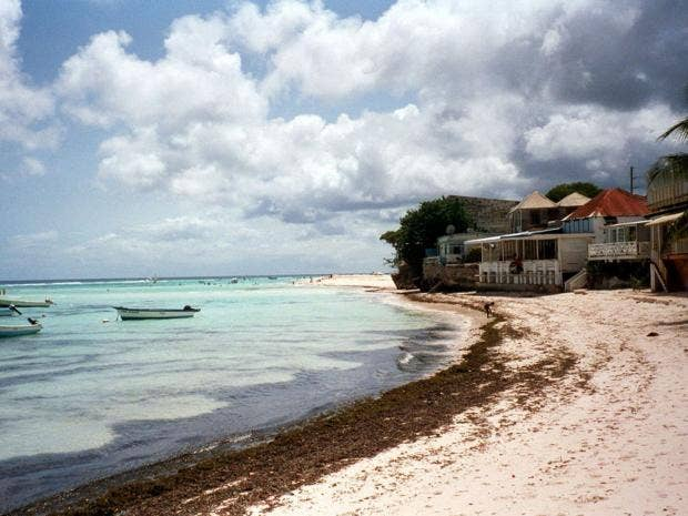 barbados-flickr.jpg