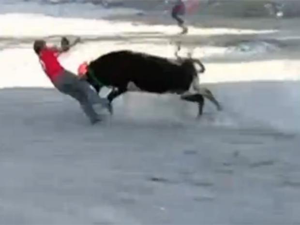 bullfight.jpg